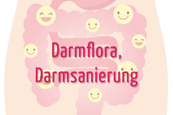 Paleo AIP Darmflora, Darmsanierung